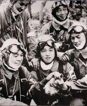 490px-72nd_Shinbu_1945_Kamikaze